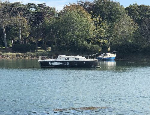 Derelict Boats Appearing in Gosport Park