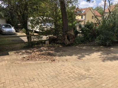 Boat Removal From Driveway - After