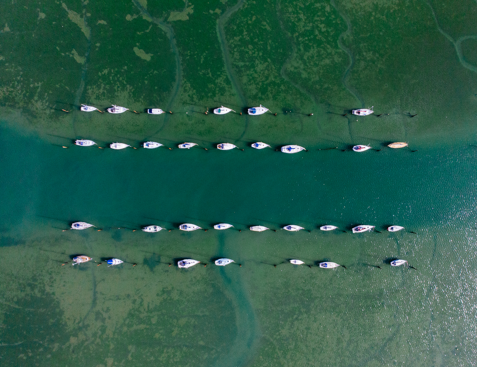 Row of Boats - © Brewmage