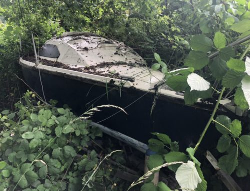 Abandoned Yacht in Bush Collection Video